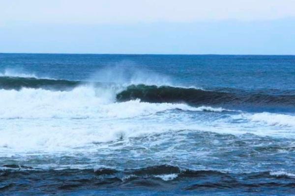 済州島でASPコンテスト開催決定。