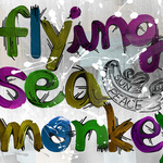 DVD「Flying Sea Monkey 3」 3月1日 発売スタート