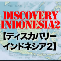 discovery21.jpg