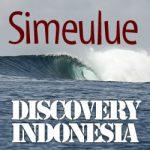 DISCOVERY INDONESIA ディスカバリーインドネシア第3弾/シメルー島4回