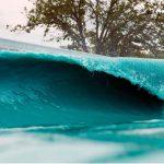 BSRサーフリゾートでサーフィンしたサーファーが脳を食べるアメーバに感染して死亡。BSR自主閉鎖
