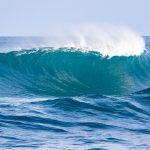 ハワイ州が発表した「全てのサーフコンテスト一時開催中止」の声明が今後のサーフィン界に及ぼす影響