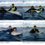 日本サーフィン連盟が「サーファーの皆様へ、夏の安全な海岸利用について、ご協力のお願い」を公開。