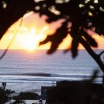 NSW州で人気のポイントブレイク「レノックスヘッド」がWSL-CTイベント開催を拒否