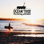 SFJで事務局長を務める、石川拳大がドキュメンタリー映画『OCEANTREE』の第二弾の製作を発表